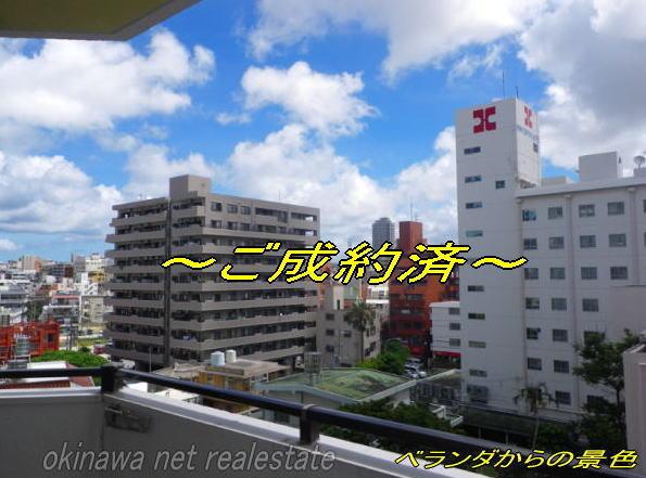 takaraMS5F-goseiyaku