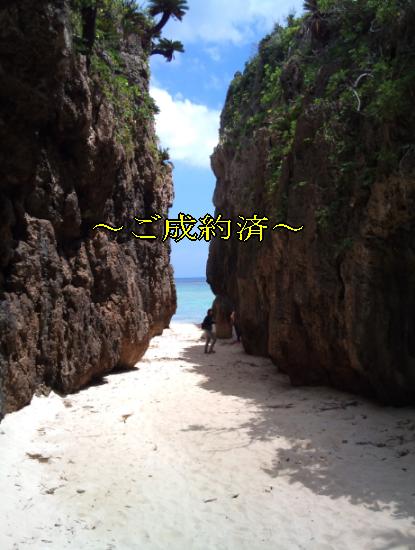 bise-goseiyaku