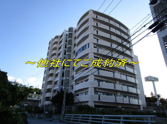 southenpalaceUR-8F-goseiyaku