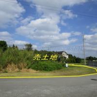yamagawa202-3