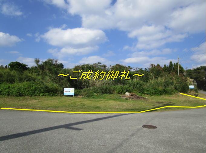 yamagawa202-goseiyaku