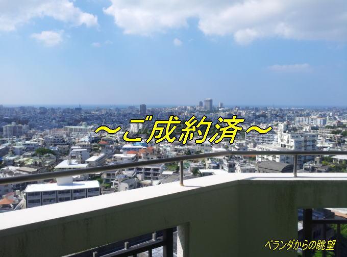 MS12-7F-goseiyaku2