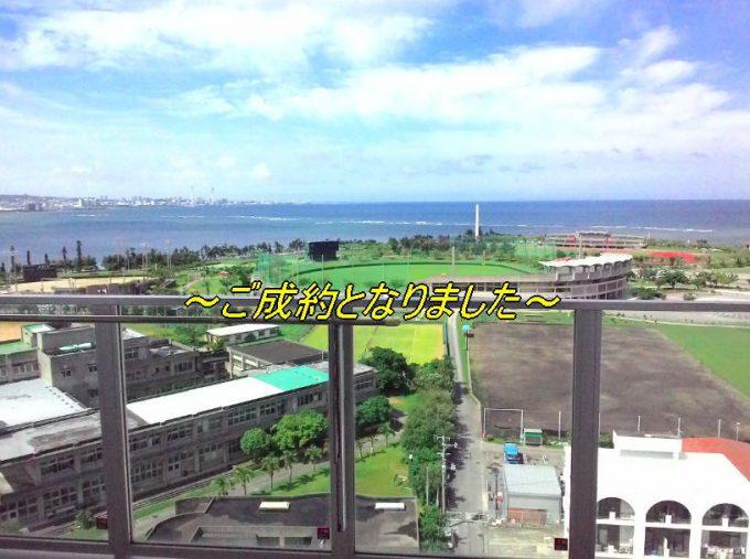 y'sestemcurtchatan-14F-goseiyaku