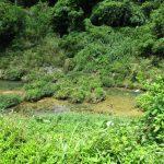 周辺環境(近くの川)