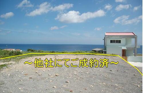 nakijin-sakiyama-goseiyaku