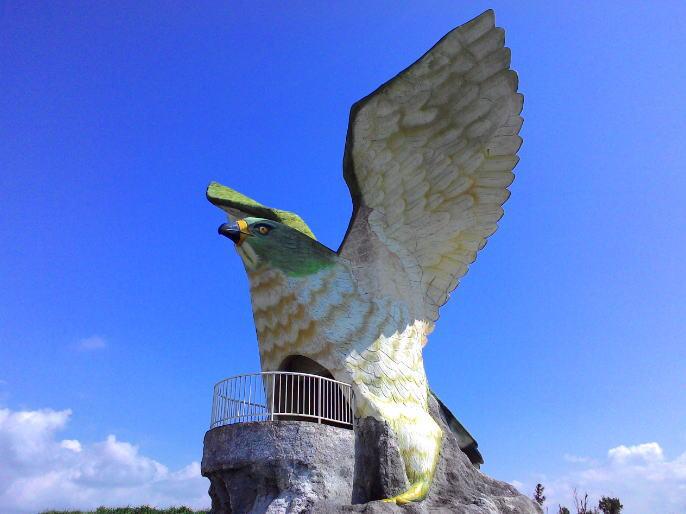 伊良部島のフナウサギバナタ展望施設のサシバ