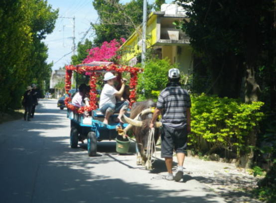 シュールな沖縄のタクシー事情